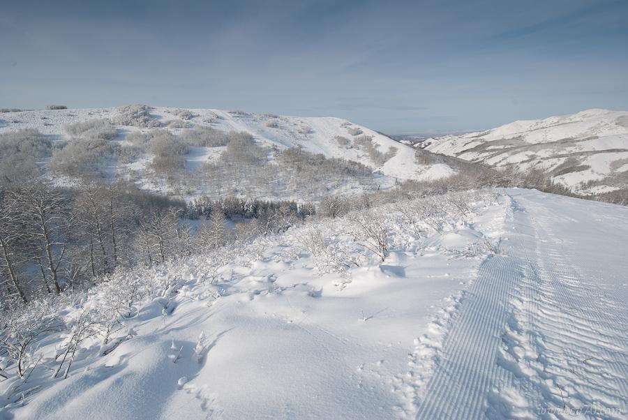 Снег и еще раз снег