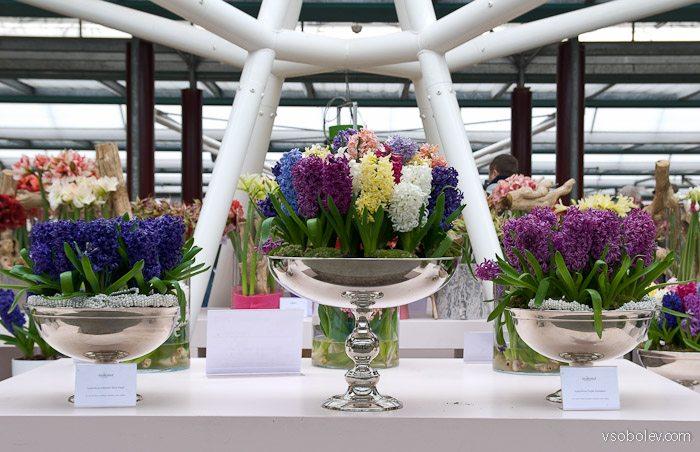 flowers-amsterdam-3