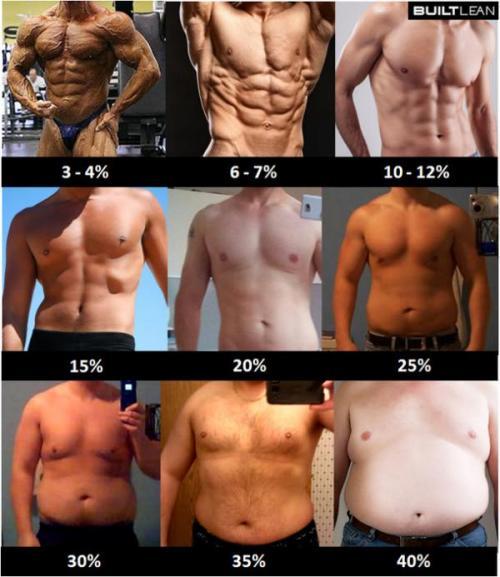 body-fat-percent-3