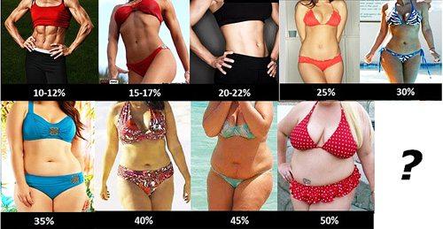 body-fat-percent-4