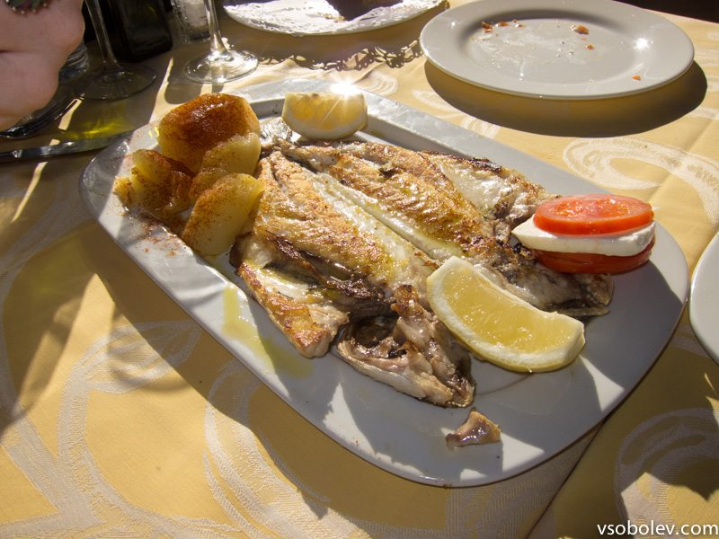barcelona-restouran-4