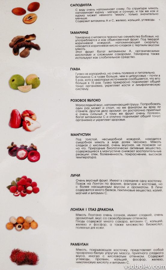 fruct-vietnam-2