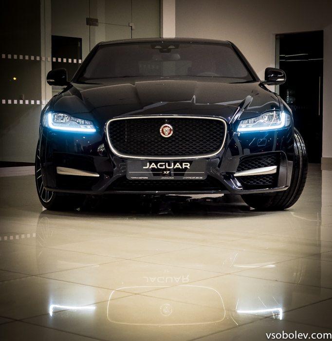 jaguar-terra-motors-28