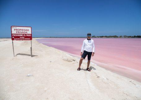 Розовые озера и розовые фламинго. Канкун.