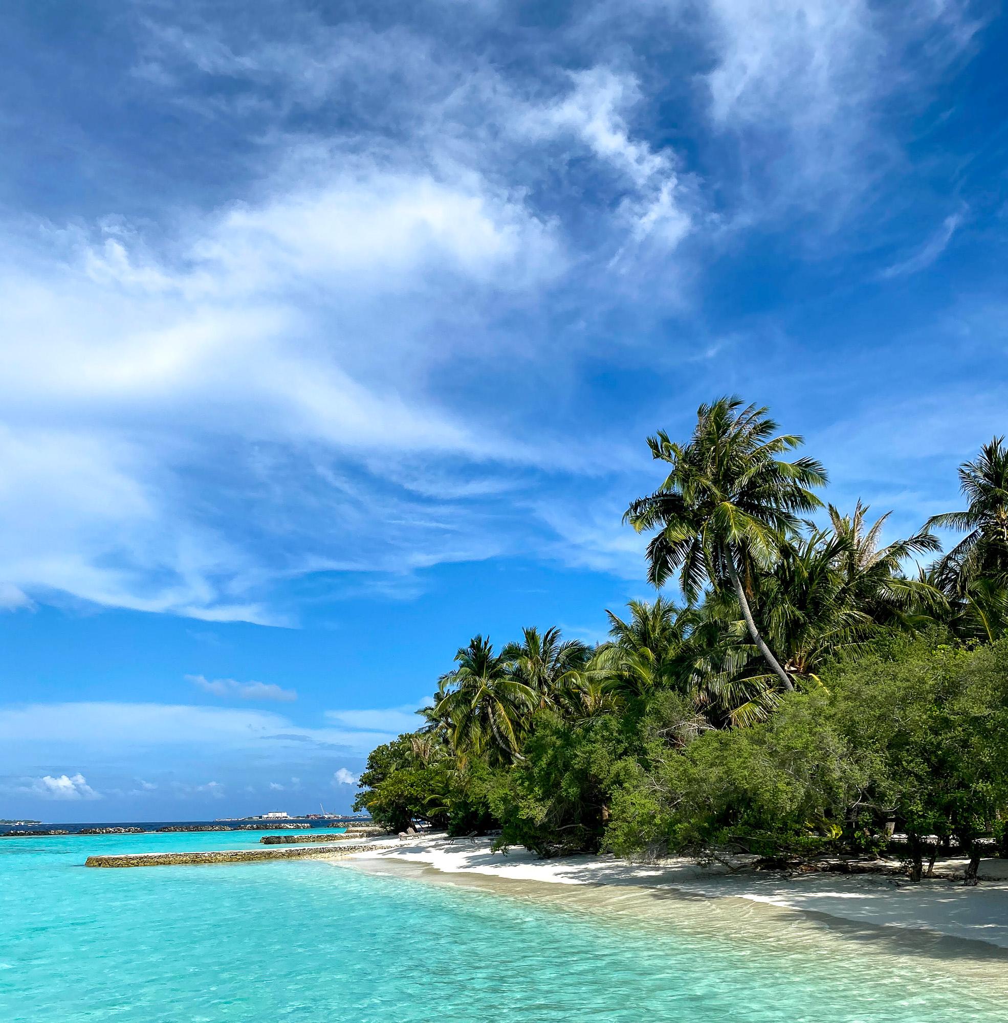 Природа Курамба Мальдивы 2021