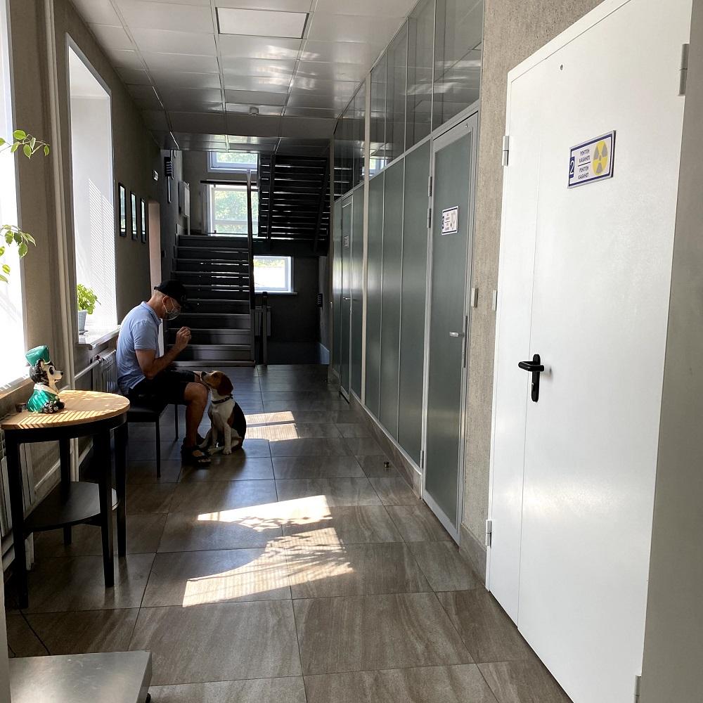 Ветеринарная клиника ZooVita в Усть-Каменогорске